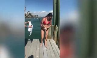 Cô gái mặc bikini giải cứu chú chim mắc kẹt gây sốt