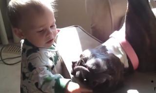 Bé cực dễ thương khi chơi đùa với cún