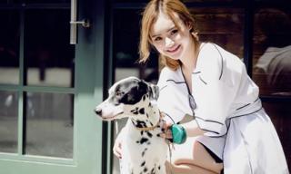 Em gái Angela Phương Trinh sành điệu xuống phố cùng thú cưng