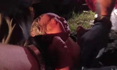 Video giải cứu bé sơ sinh còn nguyên cuống rốn bị nhét vào túi nilon bỏ rơi giữa rừng