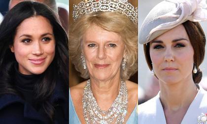 Người hâm mộ sốc nặng trước tin bà Camilla chính là người đứng đằng sau thúc đẩy sự rạn nứt giữa hai con dâu