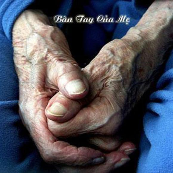 Bức ảnh 'Bàn tay của mẹ' khiến hàng nghìn con tim rơi lệ
