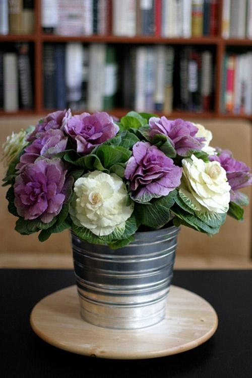 Hoa đẹp 20-10: Lạ mắt 2 mẫu cắm hoa Bắp cải - 7