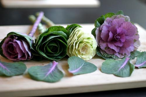 Hoa đẹp 20-10: Lạ mắt 2 mẫu cắm hoa Bắp cải - 2