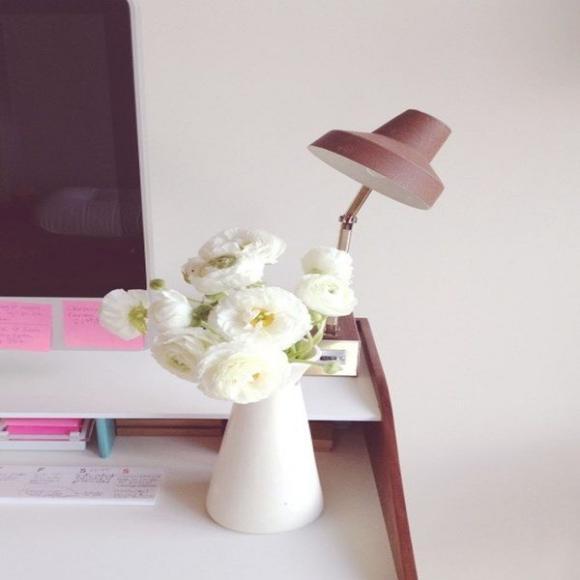 chon hoa phu hop voi tung khong gian trong nha jpg6 Chia sẻ cách lựa chọn hoa phù hợp với từng không gian trong nhà