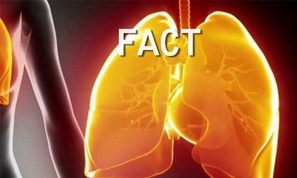 tốt cho phổi, tránh viêm phổi, bệnh hô hấp, gừng, tỏi, ngệ