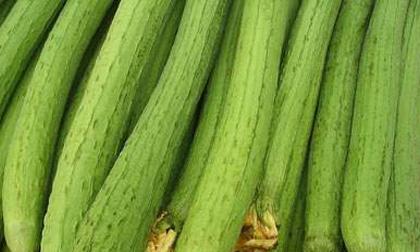 mướp, lợi ích của mướp, món ăn mùa hè