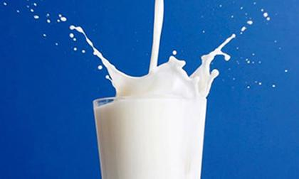uống sửa khi nào tốt nhất, cách uống sửa tốt, thời điểm uống sửa tốt nhất, sữa
