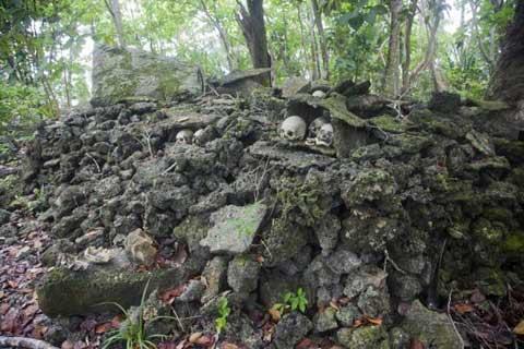 Hòn đảo,đảo sọ người,kinh hãi thăm hòn đảo sọ người với tục mai táng bằng kiến