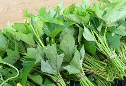 Rau lang, Lợi ích của rau lang, Thực phẩm có lợi
