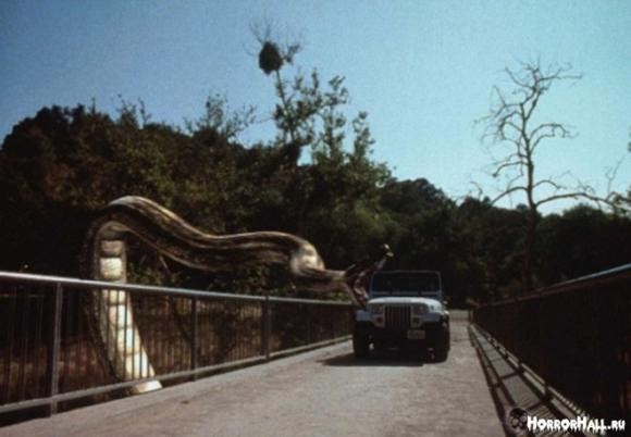 Loài rắn,phim về loài rắn,loài rắn,4 bộ phim về loài rắn