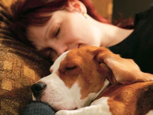 Giấc ngủ ngon, Bí quyết khỏe mạnh, Chăm sóc giấc ngủ