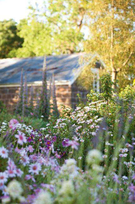 ngam ngoi nha co khu vuon day nang gio va hoa 2 Chiêm ngưỡng ngôi nhà có khu vườn đầy nắng gió và hoa