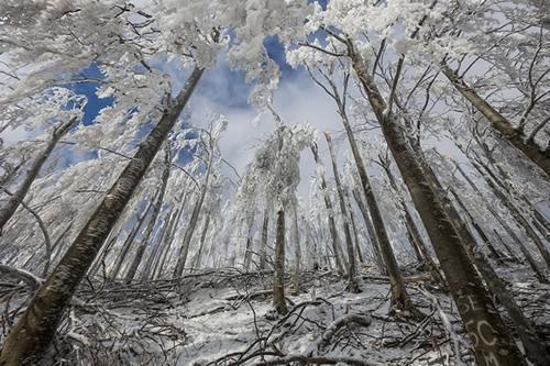Băng tuyết,hiện tượng băng tuyết,chiêm ngưỡng băng tuyết trên thế giới