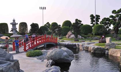 cá koi, sông Tô Lịch, công nghệ Nhật Bản