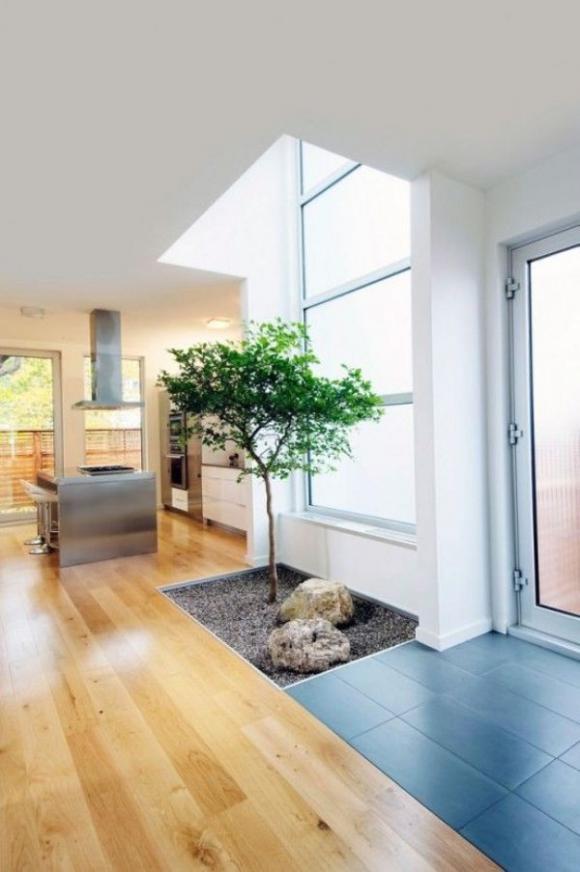 Không gian sống thư giãn với vườn cây trong nhà 1