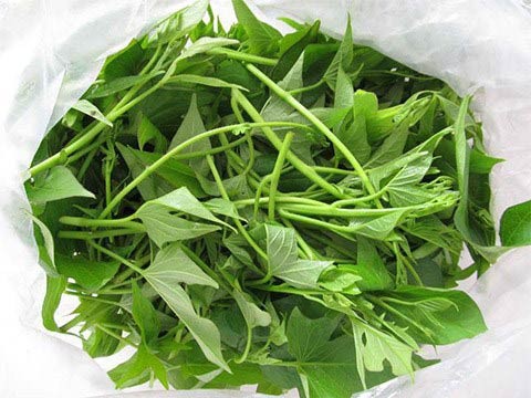 Rau khoai lang, Thực phẩm có lợi, Lợi ích của rau khoai lang