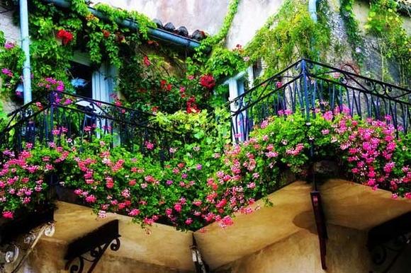 Trang trí 'khu vườn ban công' tuyệt đẹp cho ngôi nhà hiện đại 21