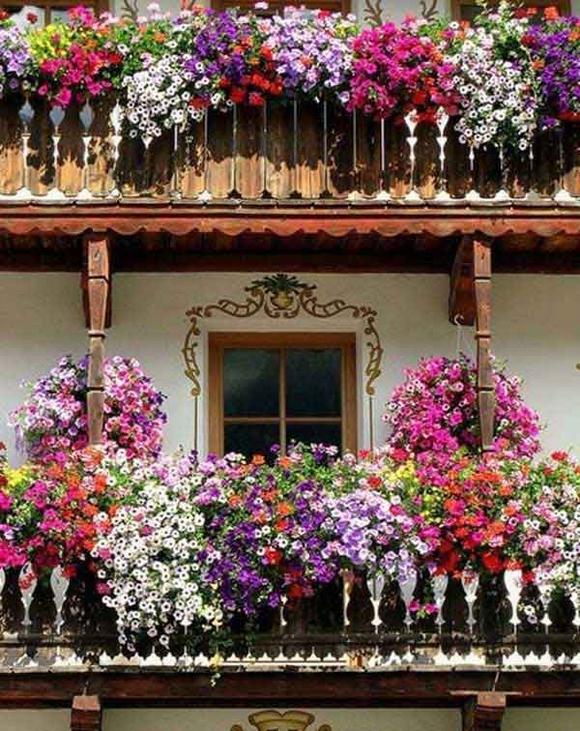 Trang trí 'khu vườn ban công' tuyệt đẹp cho ngôi nhà hiện đại 12