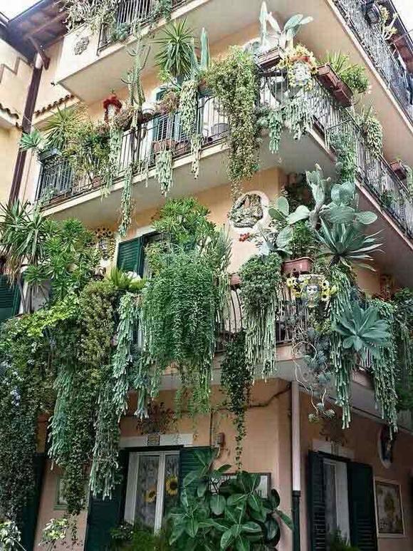 Trang trí 'khu vườn ban công' tuyệt đẹp cho ngôi nhà hiện đại 10