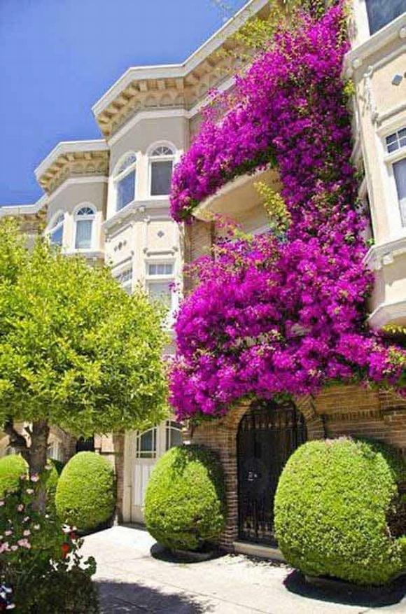 Trang trí 'khu vườn ban công' tuyệt đẹp cho ngôi nhà hiện đại 9