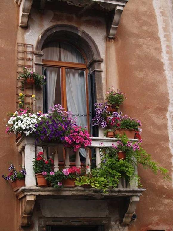 Trang trí 'khu vườn ban công' tuyệt đẹp cho ngôi nhà hiện đại 6