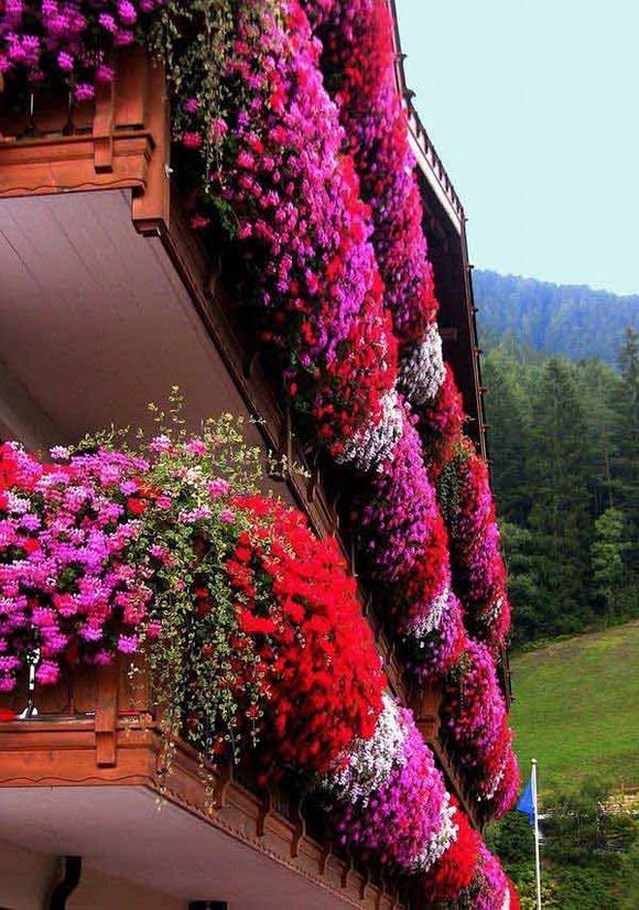 Trang trí 'khu vườn ban công' tuyệt đẹp cho ngôi nhà hiện đại 20