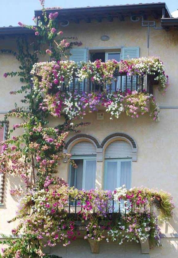 Trang trí 'khu vườn ban công' tuyệt đẹp cho ngôi nhà hiện đại 1