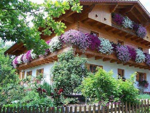 Trang trí 'khu vườn ban công' tuyệt đẹp cho ngôi nhà hiện đại 17