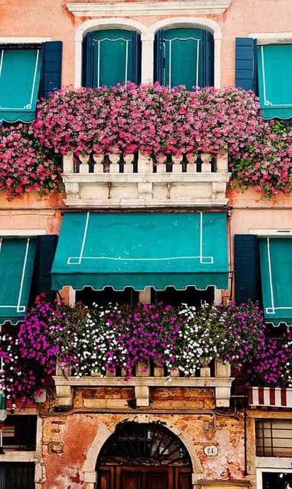 Trang trí 'khu vườn ban công' tuyệt đẹp cho ngôi nhà hiện đại 16