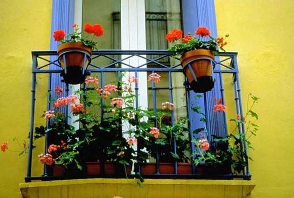 Trang trí 'khu vườn ban công' tuyệt đẹp cho ngôi nhà hiện đại 15