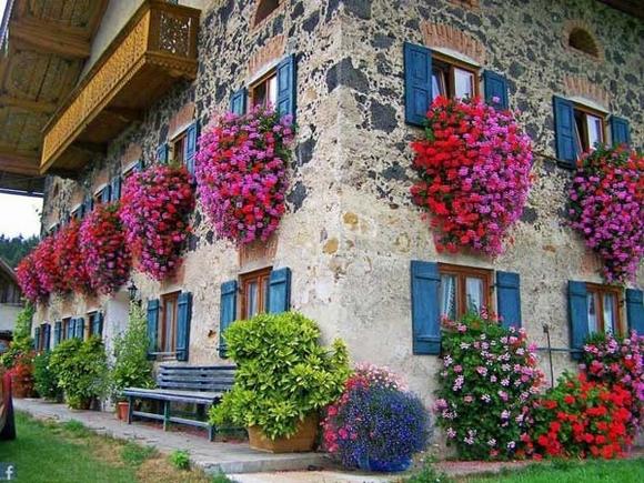 Trang trí 'khu vườn ban công' tuyệt đẹp cho ngôi nhà hiện đại 13
