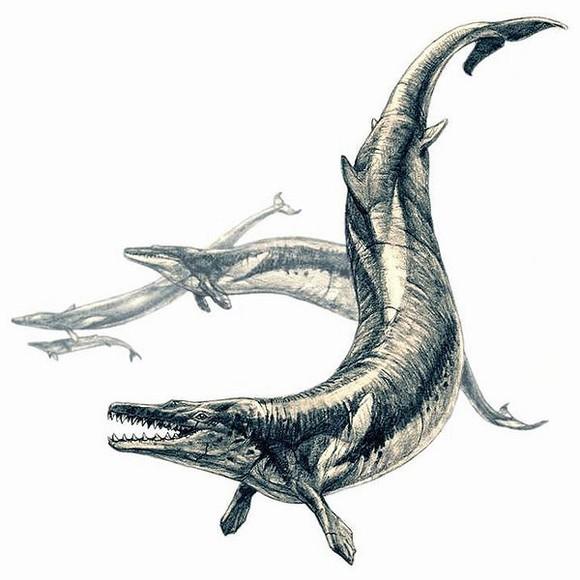 quái vật , quái vật biển, quái vật thời tiền sử, cá mập khổng lồ, tin ngôi sao