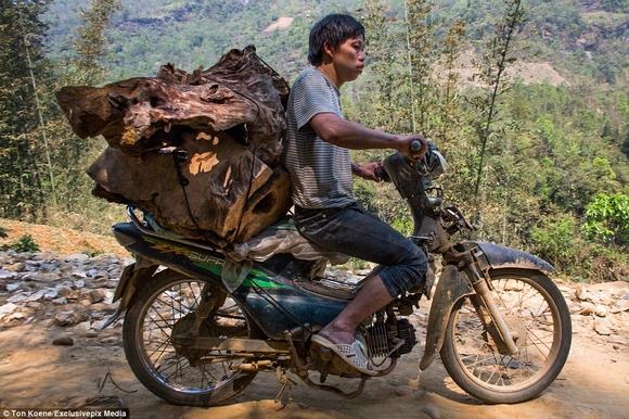 Những hình ảnh chở cồng kềnh quá tải ở Việt Nam lên báo nước ngoài 7