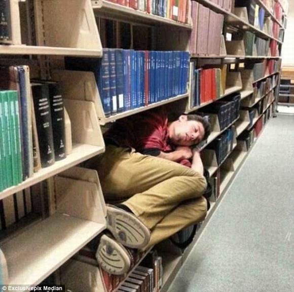 Loạt hình ảnh hài hước khó đỡ khi ngủ 10
