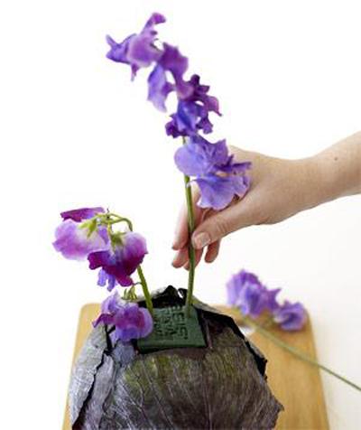 Cắm hoa vào bắp cải: sang nhà mà độc đáo - 7