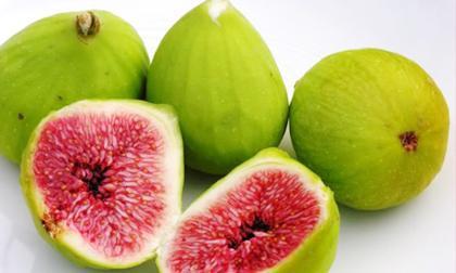 quả sung, lợi ích của quả sung, trái sung, trái vả, công dụng của quả sung