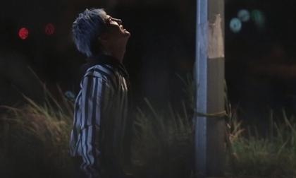 Lâm Chấn Khang, sao Việt, con Lâm Chấn Khang