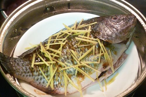 ca-hap-gung-1457049132-xahoi.com.vn-1457059037