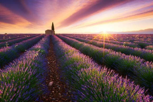 Bình minh tuyệt đẹp của các quốc gia qua ống kính nhiếp ảnh gia Pháp