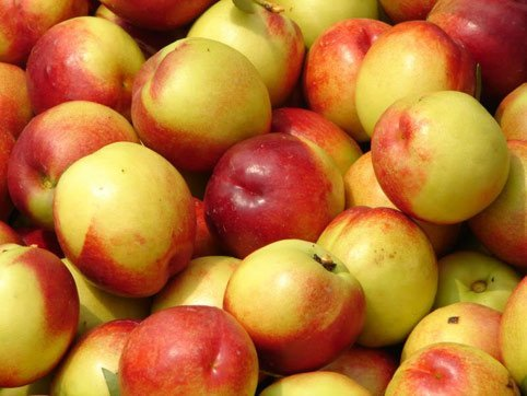 12 loại trái cây, rau củ chứa nhiều thuốc trừ sâu 0