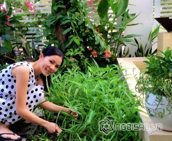 Vườn rau nhà sao Việt 0