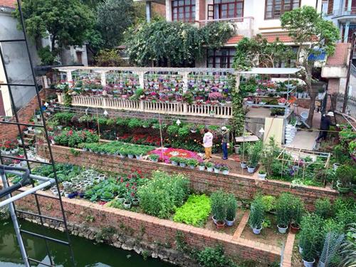 Biệt thự, biệt thự nhà vườn, biệt thự đẹp, biệt thự nhà vườn đẹp, biệt thự ở Hạ Long, mẫu nhà đẹp