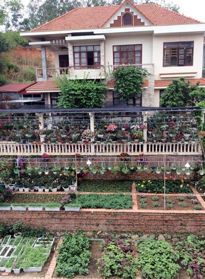 Biệt thự nhà vườn đẹp  9