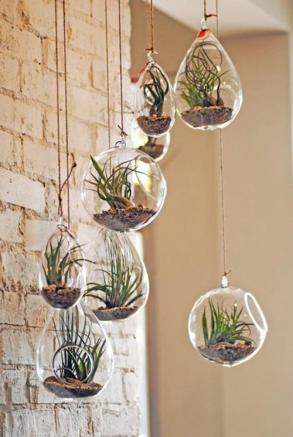 12 ý tưởng tuyệt vời để tạo một khu vườn thẳng đứng trong nhà của bạn 9