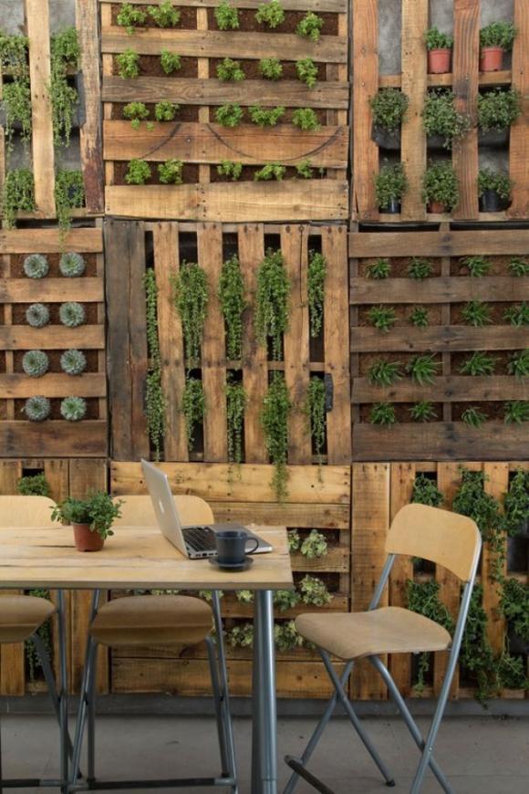 12 ý tưởng tuyệt vời để tạo một khu vườn thẳng đứng trong nhà của bạn 6