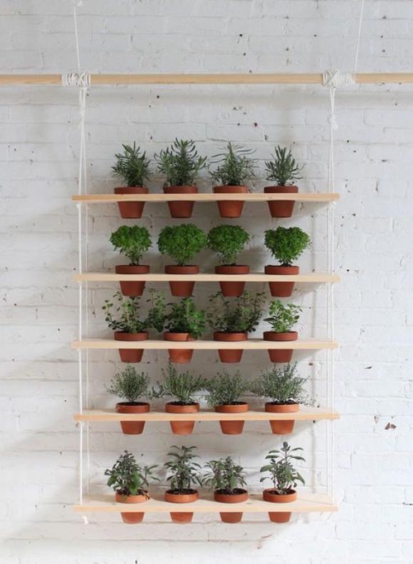 12 ý tưởng tuyệt vời để tạo một khu vườn thẳng đứng trong nhà của bạn 11