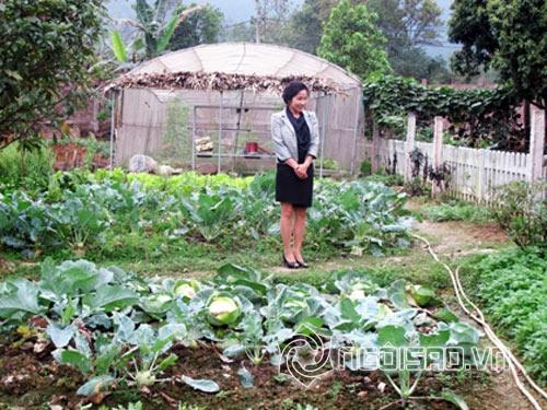 Thực phẩm bẩn, sao Việt, sao Việt tự trồng rau, sao Việt đi chợ, sao Việt chọn thực phẩm, vườn rau nhà sao Việt