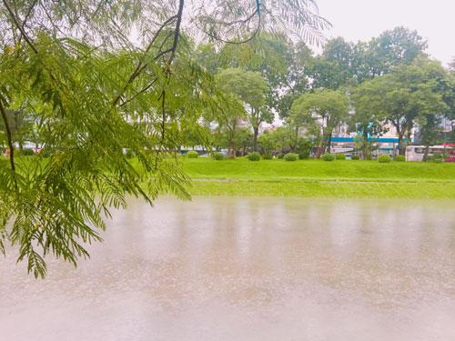 Sông Tô Lịch, Sông Tô Lịch bẩn, sông Tô Lịch sau cơn bão, ảnh hưởng cơn bão số 3, sông ở Hà Nội