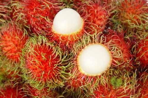 nổi mụn, hoa quả nóng, làm đẹp, xoài, mít, chôm chôm, nhãn